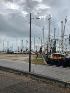 IMG_0807.jpg city docks